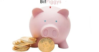 Bitpiggys Bitcoin Safe